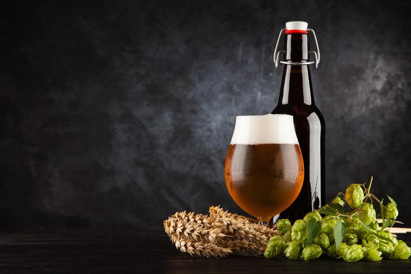 Castilla Jardín Cervecero